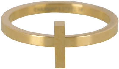 Ring R416 Gold 'Steel Hope'