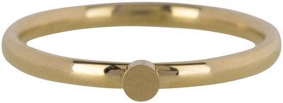 Ring R480 Gold 'Steel Pixy' Staffelkortingen!