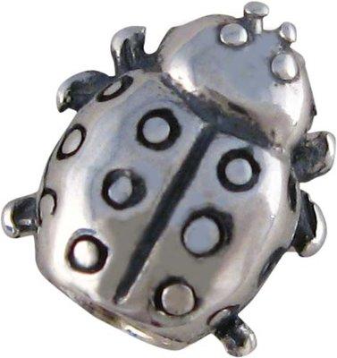 Kraal 'Ladybug'
