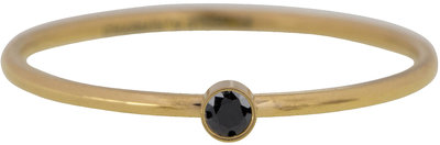 R493 Shine Bright 2.0 Gold Steel with black crystal