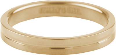 Ring R344 Gold 'Matt and Shiny'