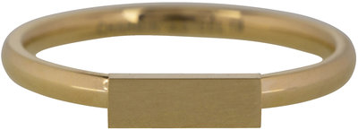 Ring R420 Gold 'Retangle'  Staffelkorting