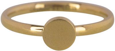 Ring R424 Gold 'Fashion Seal Medium' Staffelkorting!