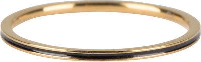 R699 Petite Gold  Steel Black Enamel