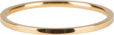 R693 Basic Petite Gold Steel