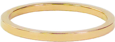 Ring R314 Gold 'Plain Steel'