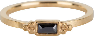 R585 Royal Rectangle Gold Steel Black CZ