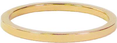 Ring R314 Gold 'Plain Steel'