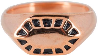 R675 Fancy Seal Rose Gold Steel