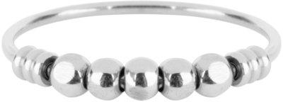 R516 Palm Shiny Steel